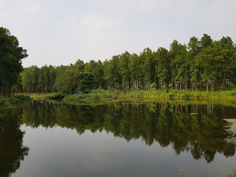 Paesaggio della natura fotografia stock