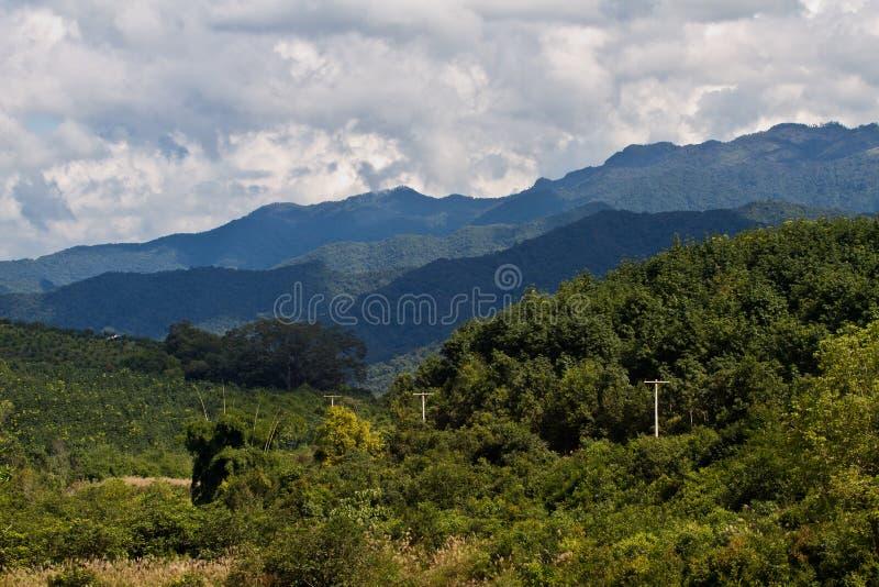 Paesaggio della natura del Laos Paesaggio scenico Bello posto Natura selvaggia fotografia stock libera da diritti