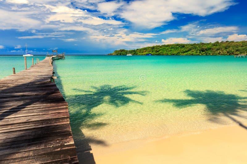 Paesaggio della natura: Spiaggia tropicale sabbiosa stupefacente con l'albero del cocco della siluetta in mare cristallino e nell fotografie stock libere da diritti