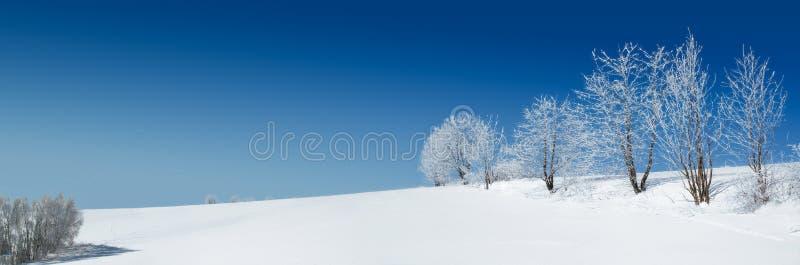 Paesaggio della neve fotografie stock