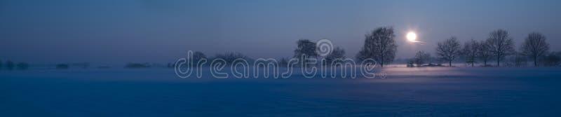 Paesaggio della neve con foschia fotografia stock libera da diritti