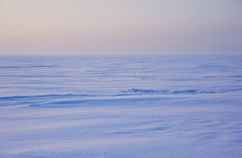 Paesaggio della neve di inverno fotografia stock