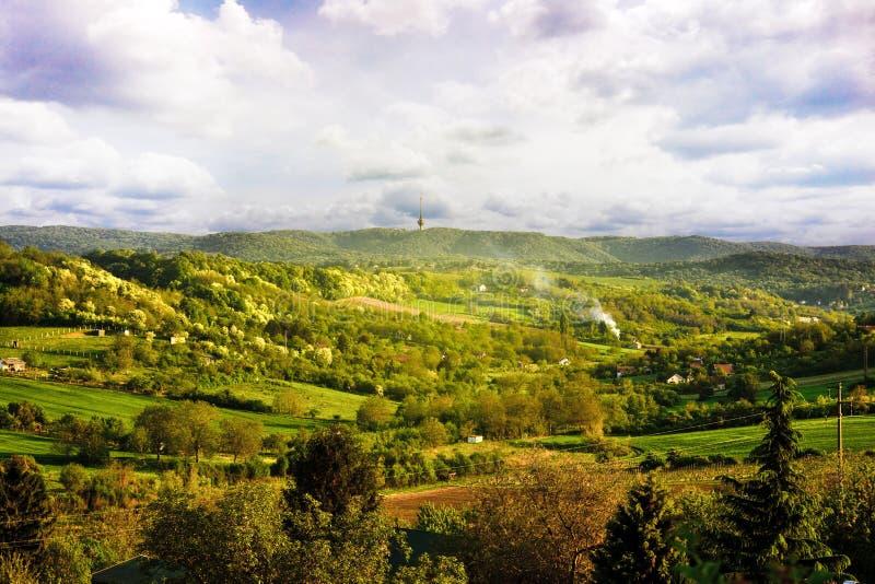 Paesaggio della primavera del parco nazionale Fruska Gora, Serbia fotografia stock
