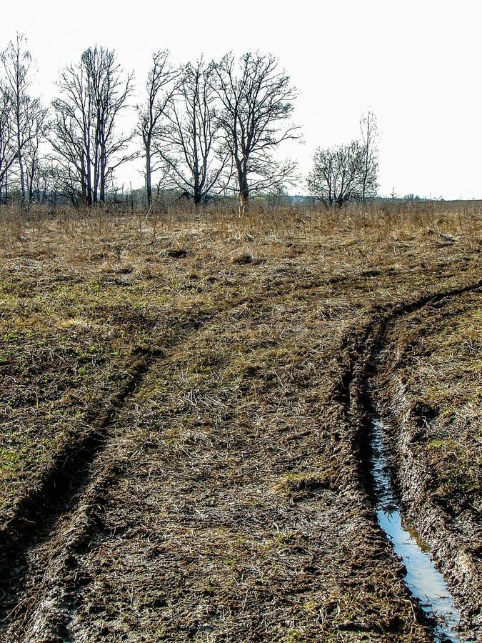 Paesaggio della primavera nella regione di Kaluga (Russia) immagine stock libera da diritti