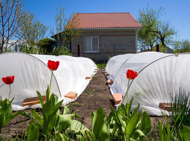 Paesaggio della primavera su una piccola residenza di estate immagine stock libera da diritti