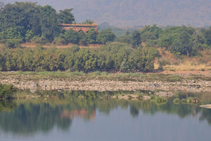 Paesaggio della riserva della tigre di panna, Madhya Pradesh, India fotografie stock libere da diritti