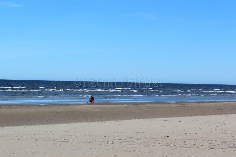 Paesaggio della spiaggia baltica in primavera fotografia stock