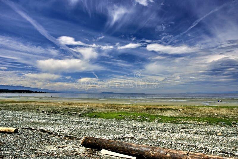 Paesaggio della spiaggia dell'oceano fotografia stock