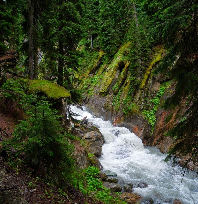 Paesaggio della torrente montano in Svaneti immagini stock libere da diritti