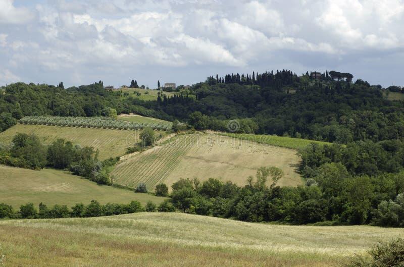 Paesaggio della Toscana immagine stock