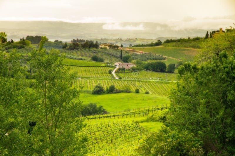 Paesaggio della Toscana vicino a San Gimignano, Italia fotografia stock
