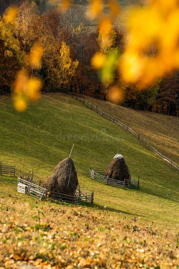 Paesaggio della Transilvania nel tempo di autunno, lato del paese della Romania immagine stock