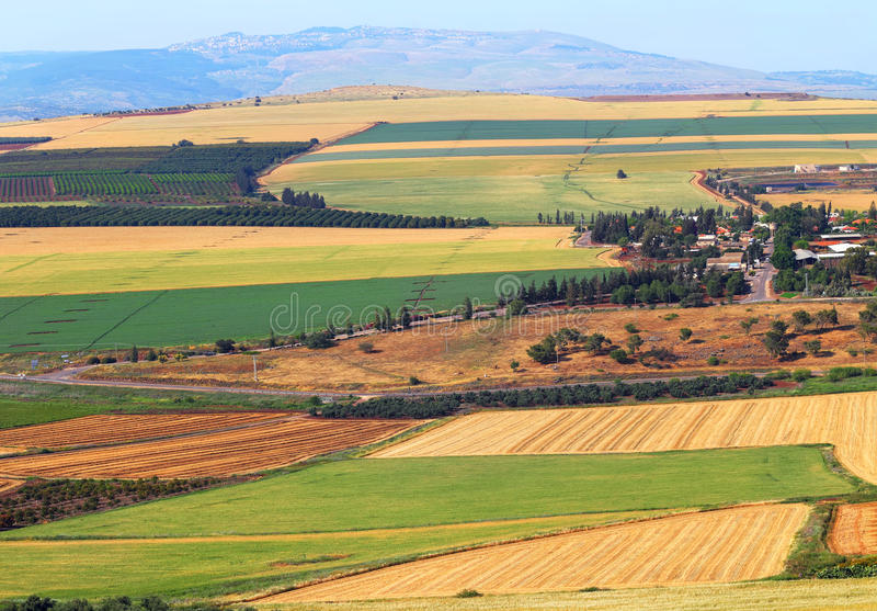 Paesaggio della valle di agricoltura Raccolta immagini stock