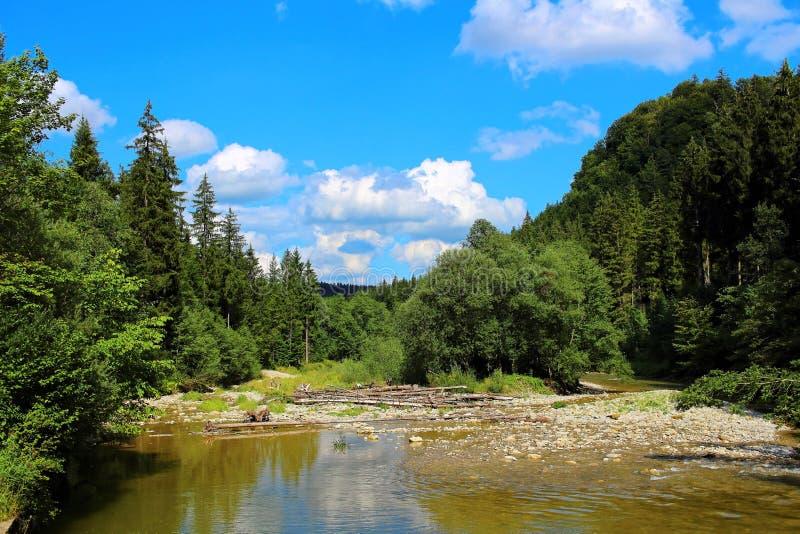 Paesaggio della valle di Ammerschlucht immagini stock