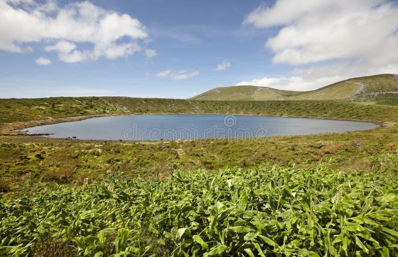 Paesaggio delle Azzorre con il lago nell'isola del Flores Caldeira Rasa Porta fotografia stock