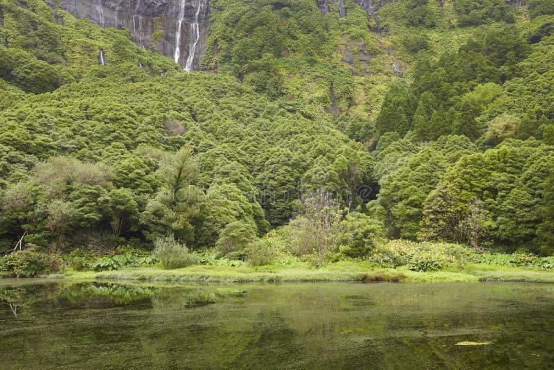 Paesaggio delle Azzorre nell'isola del Flores Cascate in Pozo da Alagoin immagini stock libere da diritti