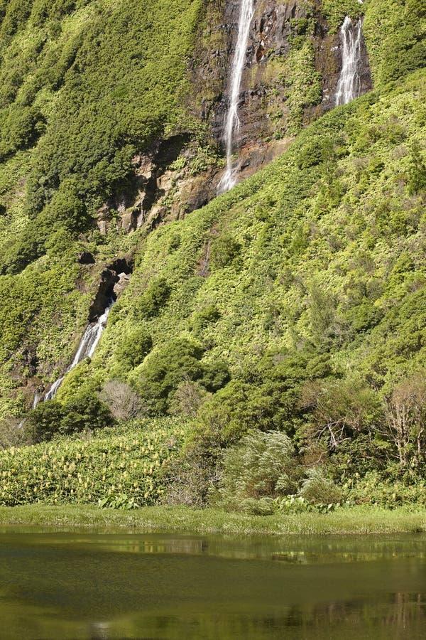 Paesaggio delle Azzorre nell'isola del Flores Cascate in Pozo da Alagoin fotografie stock