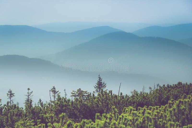 Paesaggio delle colline della montagna nebbiosa Vista degli strati delle montagne e della foschia nelle valli fotografie stock