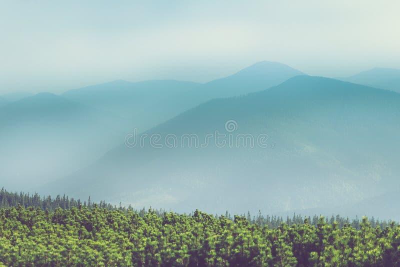 Paesaggio delle colline della montagna nebbiosa Vista degli strati delle montagne e della foschia nelle valli immagini stock libere da diritti