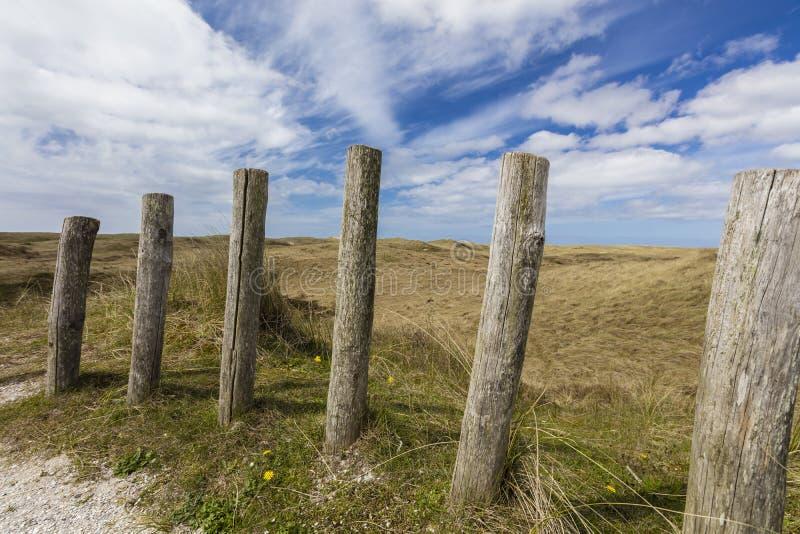 Paesaggio delle dune nei Paesi Bassi fotografia stock
