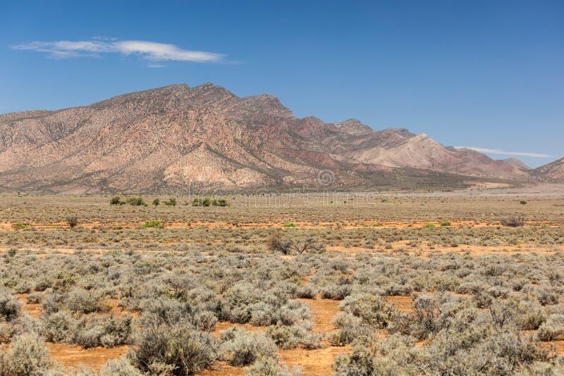 Paesaggio delle gamme del Flinders. Australia Meridionale fotografia stock libera da diritti