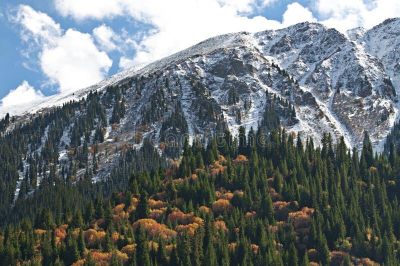 Paesaggio delle montagne del Tibet. immagine stock libera da diritti