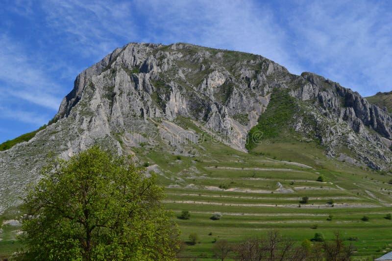 Paesaggio delle montagne della natura fotografie stock libere da diritti