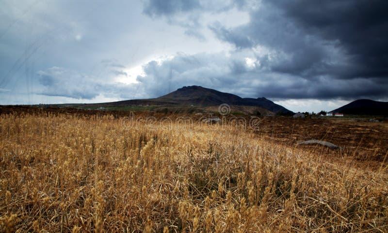 Paesaggio delle montagne di Mourne fotografia stock libera da diritti