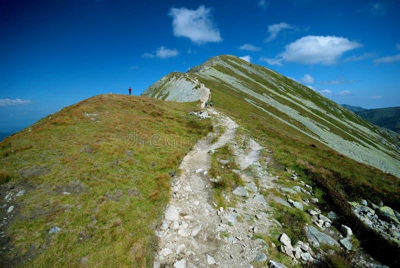 Paesaggio delle montagne in Slovacchia fotografia stock