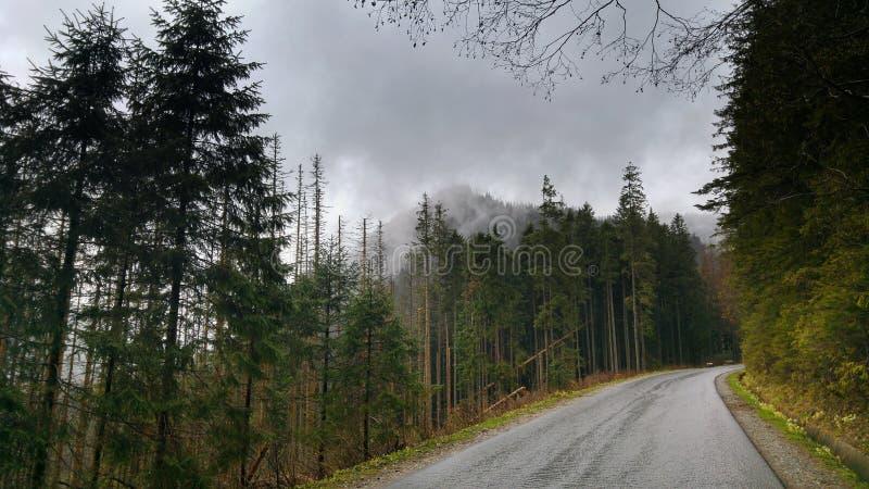 Paesaggio di alte montagne di Tatra in Polonia immagine stock libera da diritti