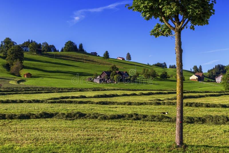 Paesaggio di Appenzell, Svizzera fotografie stock libere da diritti