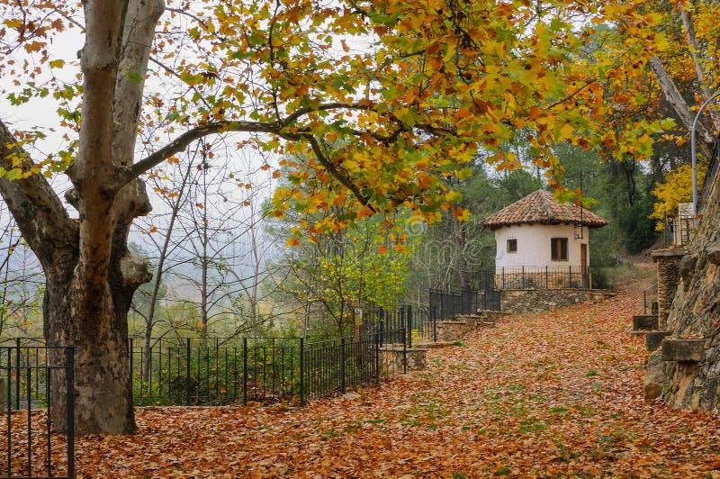 Paesaggio di Autumm con le foglie e la casa cadute fotografia stock