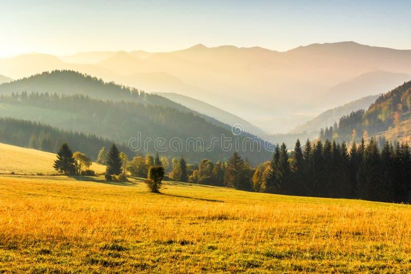 Paesaggio di autunno, alba in una mattina nebbiosa immagini stock