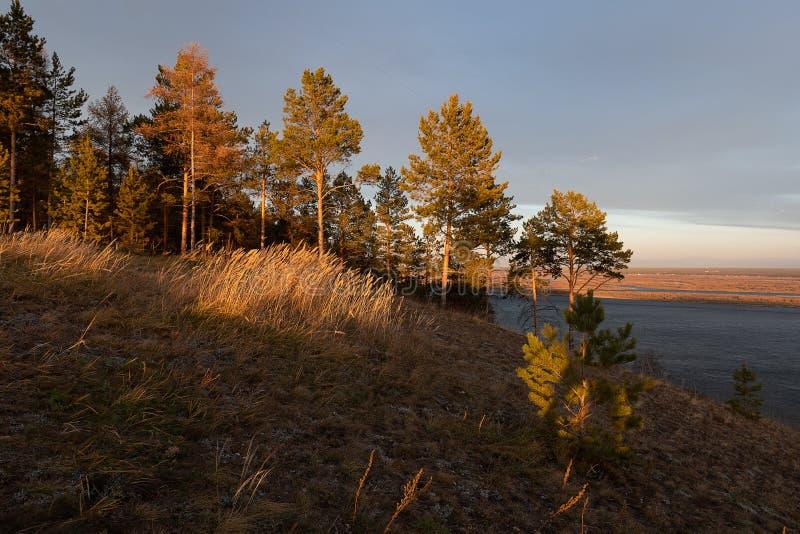 Paesaggio di autunno con gli alberi e un ampio fiume fotografia stock libera da diritti