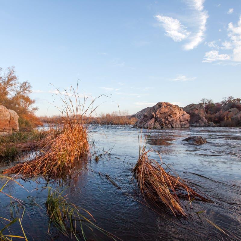Paesaggio di autunno con il fiume del sud dell'insetto fotografie stock