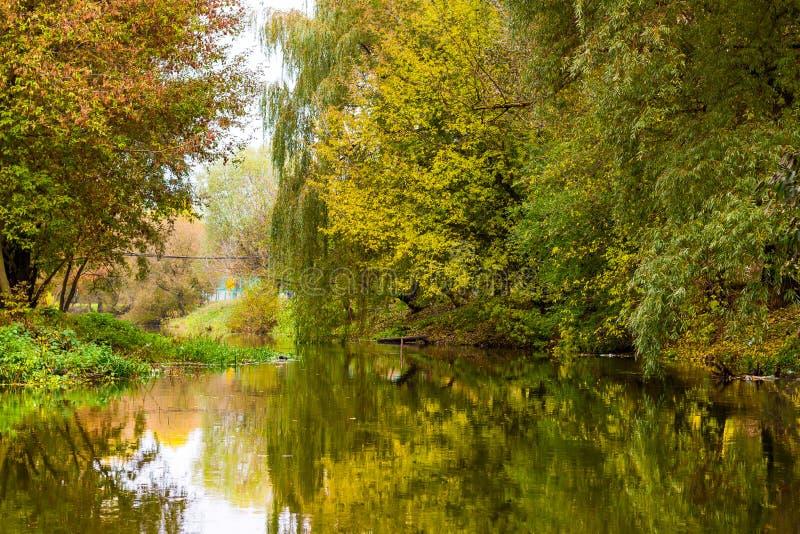 Paesaggio di autunno con il fiume del sud dell'insetto fotografia stock