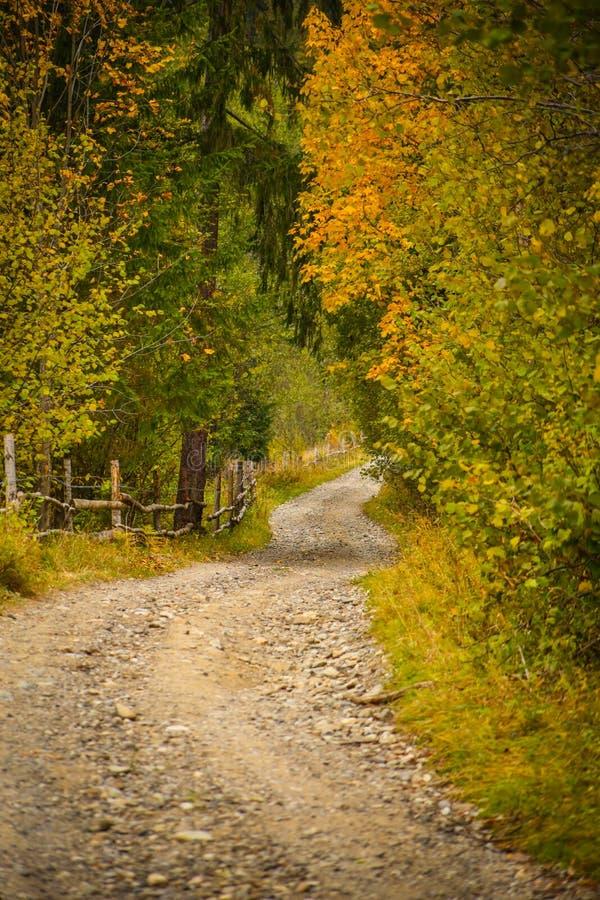 Paesaggio di paesaggio di autunno con la strada rurale, la foresta variopinta, i recinti di legno ed i granai del fieno in Bucovi immagine stock