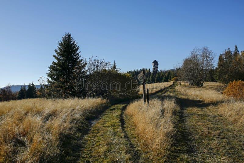 Paesaggio di autunno con la torre di osservazione in montagna di Gorce fotografie stock libere da diritti