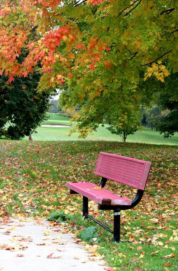 Paesaggio di autunno con un banco rosso immagine stock