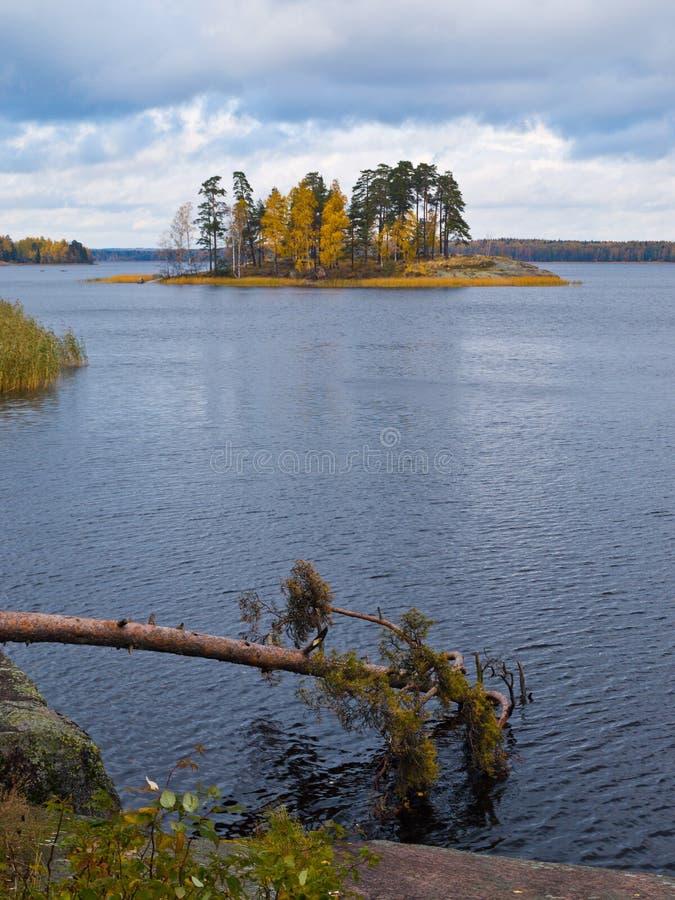 Paesaggio di autunno del fiume e degli alberi luminosi immagini stock libere da diritti