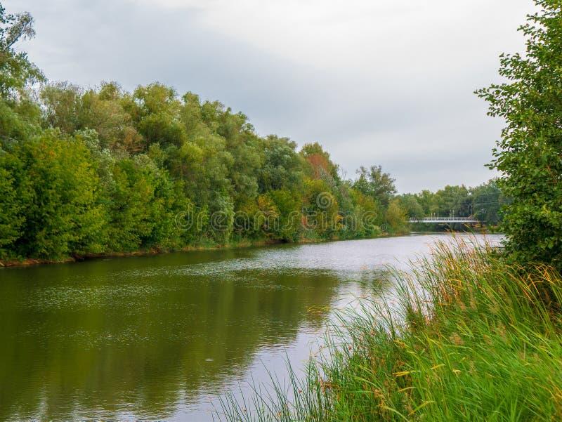 Paesaggio di autunno del fiume e degli alberi Paesaggio nuvoloso fotografia stock libera da diritti