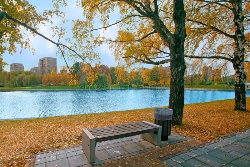 Paesaggio di autunno del parco della città con il banco, gli alberi di betulla e blu fotografia stock