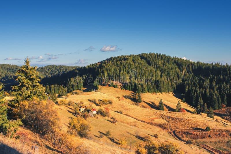 Paesaggio di autunno della montagna con la foresta variopinta e la h tradizionale immagine stock libera da diritti