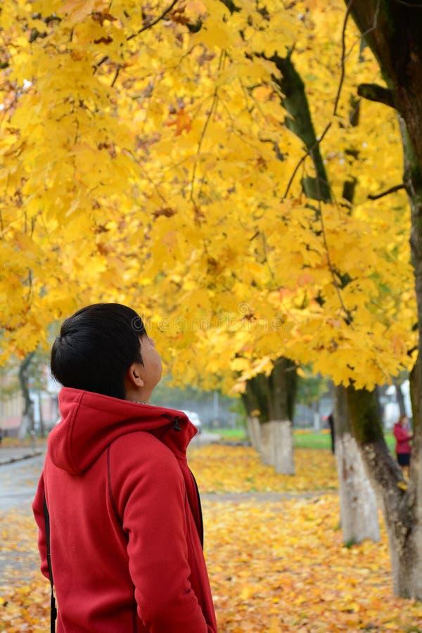 Paesaggio di autunno in Europa immagine stock