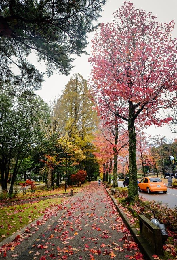 Paesaggio di autunno a Kyoto, Giappone fotografia stock libera da diritti