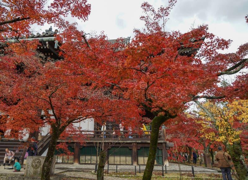 Paesaggio di autunno di Kyoto, Giappone immagini stock