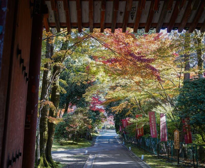 Paesaggio di autunno di Kyoto, Giappone immagine stock