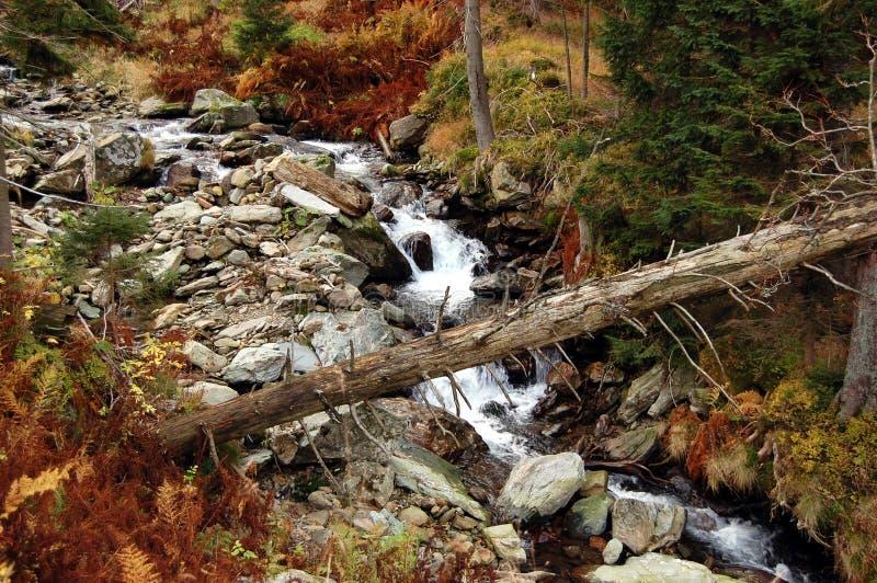 Paesaggio di autunno in montagne giganti fotografia stock