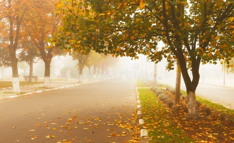 Paesaggio di autunno nella cittadina Via nebbiosa di mattina di autunno immagine stock