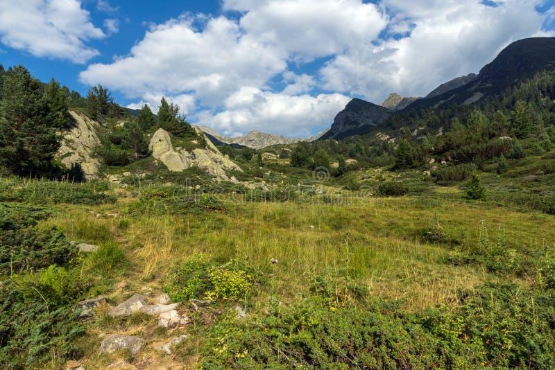 Paesaggio di Begovitsa River Valley, montagna di Pirin, Bulgaria immagini stock libere da diritti